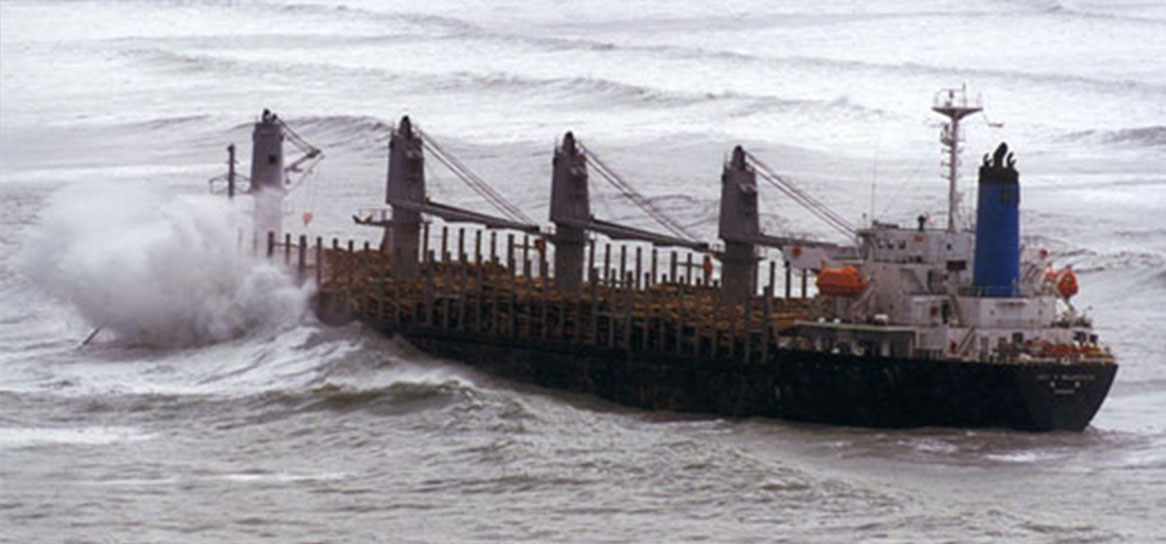 The Jody F Millennium ran aground in Gisborne after breaking free from her moorings.